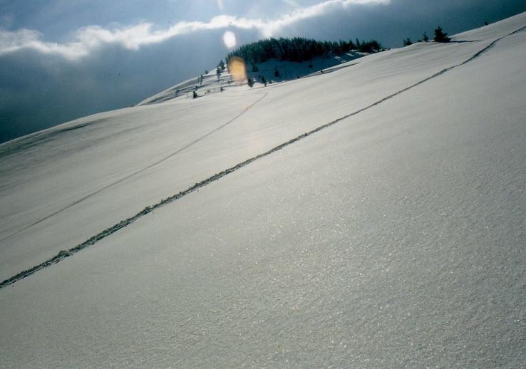 snehové pláne v Liptovskej Tepličke