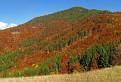 Jesenná Lysica