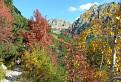Jesen v Mengusovskej