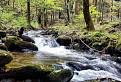 Kamenčiansky potok