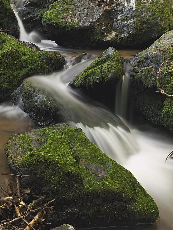 Na potoku v Karpatoch