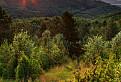 Milujem svitanie na horách... / 1.0000