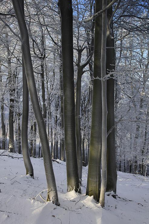 Zima pod Klokočom