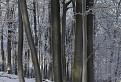 Zima pod Klokočom / 1.0250