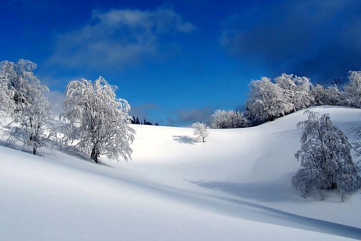Winter dreams part 6