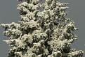snehová socha