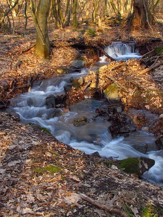 Suchý potok opäť raz ožil II.
