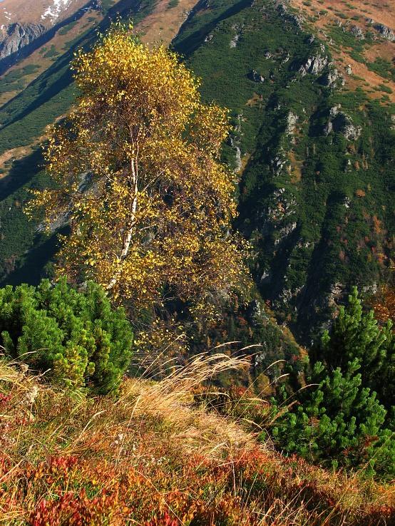 jesenné hory