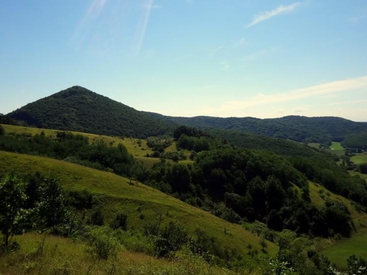 Ragáč ze Zabodské planiny