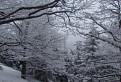 Zimná krása na Vtáčniku