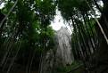 Tulanie sa sulovskymi skalami