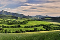 Zeleny kraj 2013
