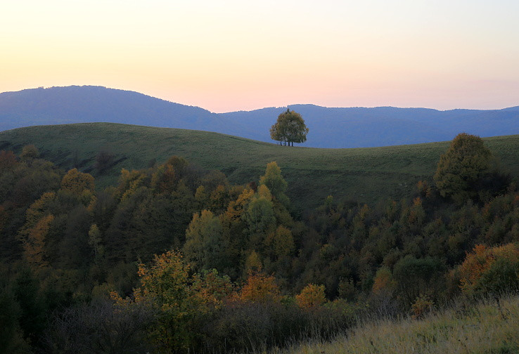Krivky Gazdoráňa