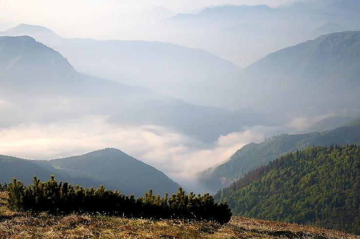 Údolné hmly