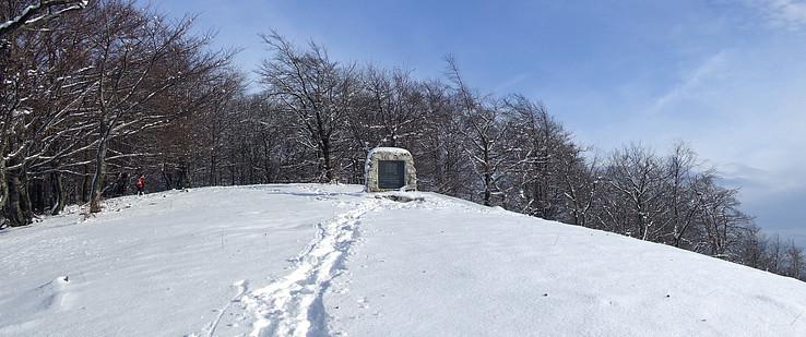 Pamätník na Rokoši