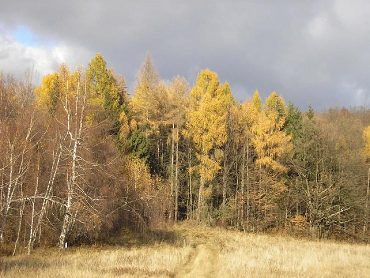Spomienka na jeseň v Štiavnických vrchoch