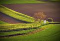 farebné rakúske políčka