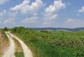 Cesta do Limbachu / 1.0455