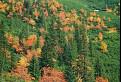 Jesenná nálada pri Ťatliakovom jazere (1370 m)