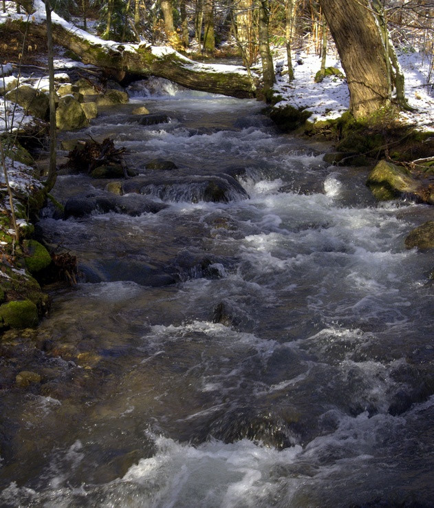 Pokútsky potok
