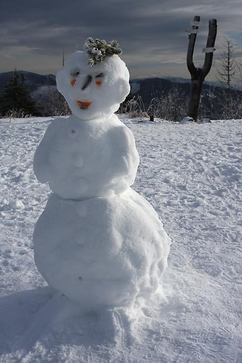 Lenivý snehuliak