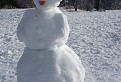 Lenivý snehuliak / 1.0000