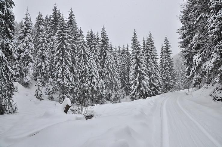 Zimnými Malými Zajfami