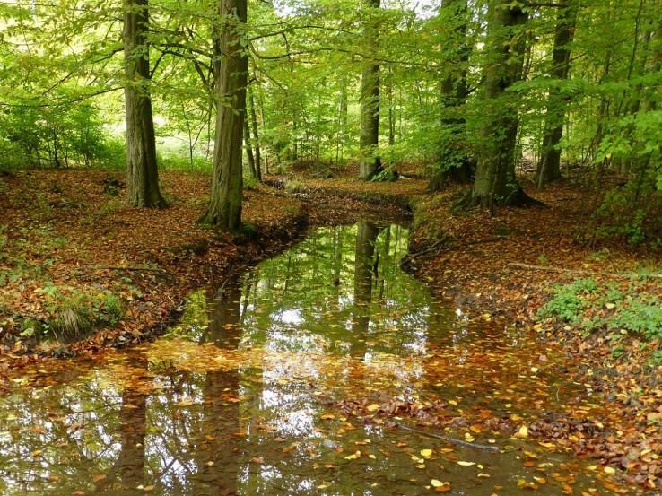 prechod cez potok