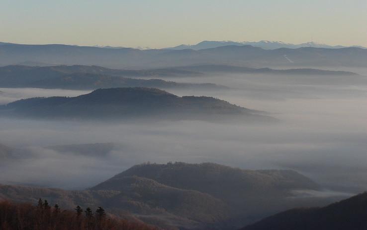 Údolné ranné hmly