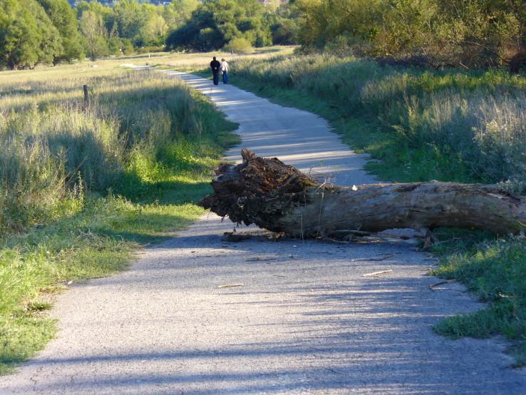 Cyklo-chodník