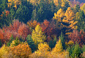 Jednoducho-jeseň