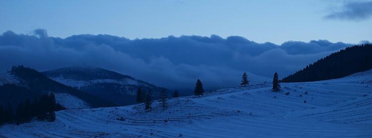 Pred príchodom snehu