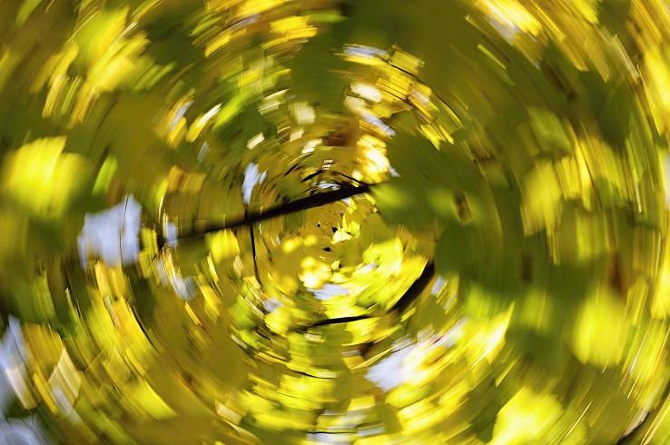 Jesenný kolotoč