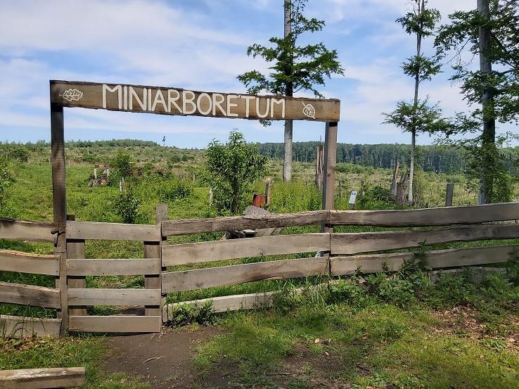 Miniarboretum