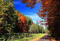 Jesenná Bobrovecká