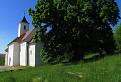 stará lipa za kostolom