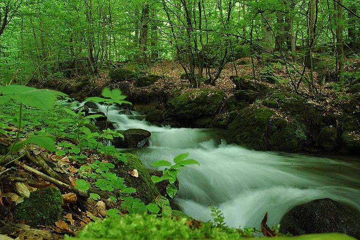 Tečie voda tečie dolu kopcom.