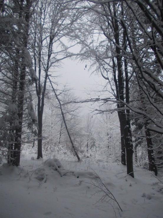 oravská zima