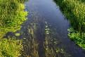 Zohorský kanál