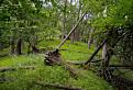 Bokšovský hrebeň