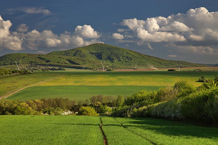 Szurok-hegy