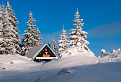 V panenskom snehu pod Suchým vrchom