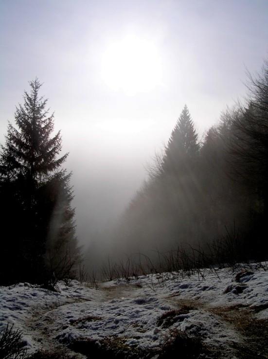 Cez hmlu sa ani slniečko moc neprederie