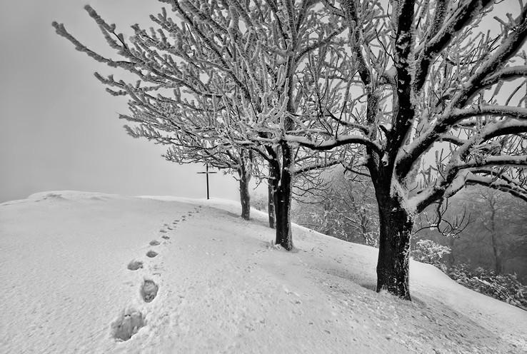 Snehová Vysoká