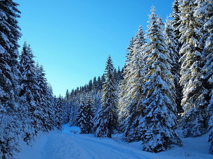 Krásnu a zdravú cestu životom prajem :-))