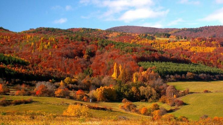 Jeseň pod Magurou