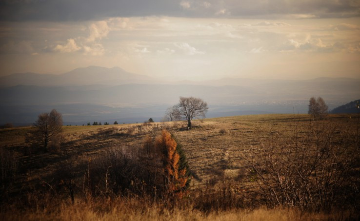 Zo Suroviny do Maďarska