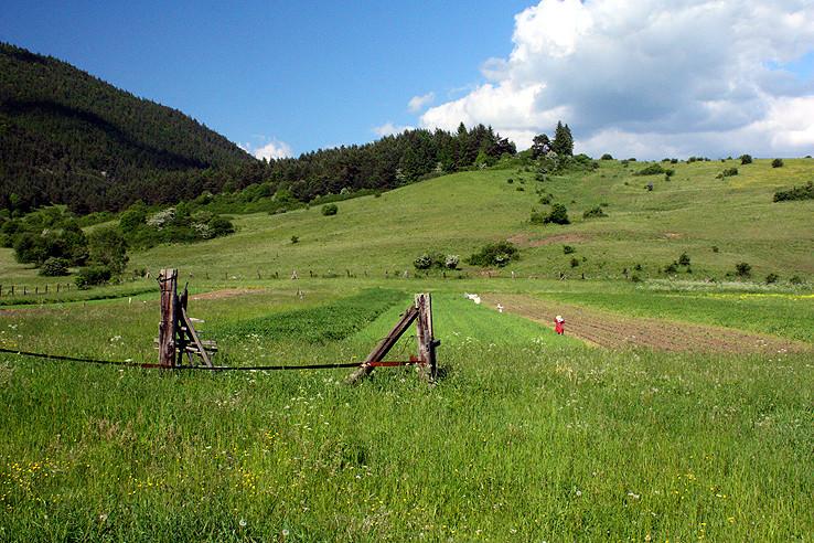 políčka pred Prosieckou dolinou