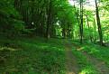 Záhradská dolina