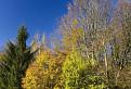 Jeseň pod Vapečom